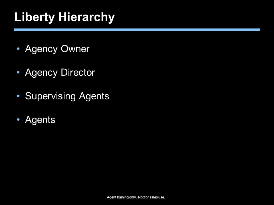 Liberty Hierarchy Agency Owner Agency Director Supervising Agents Agents