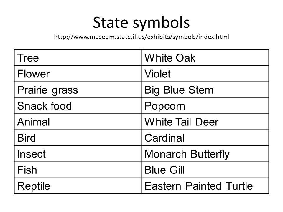 State symbols http://www.museum.state.il.us/exhibits/symbols/index.html TreeWhite Oak FlowerViolet Prairie grassBig Blue Stem Snack foodPopcorn Animal