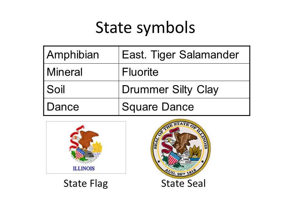 State symbols AmphibianEast. Tiger Salamander MineralFluorite SoilDrummer Silty Clay DanceSquare Dance State Flag State Seal