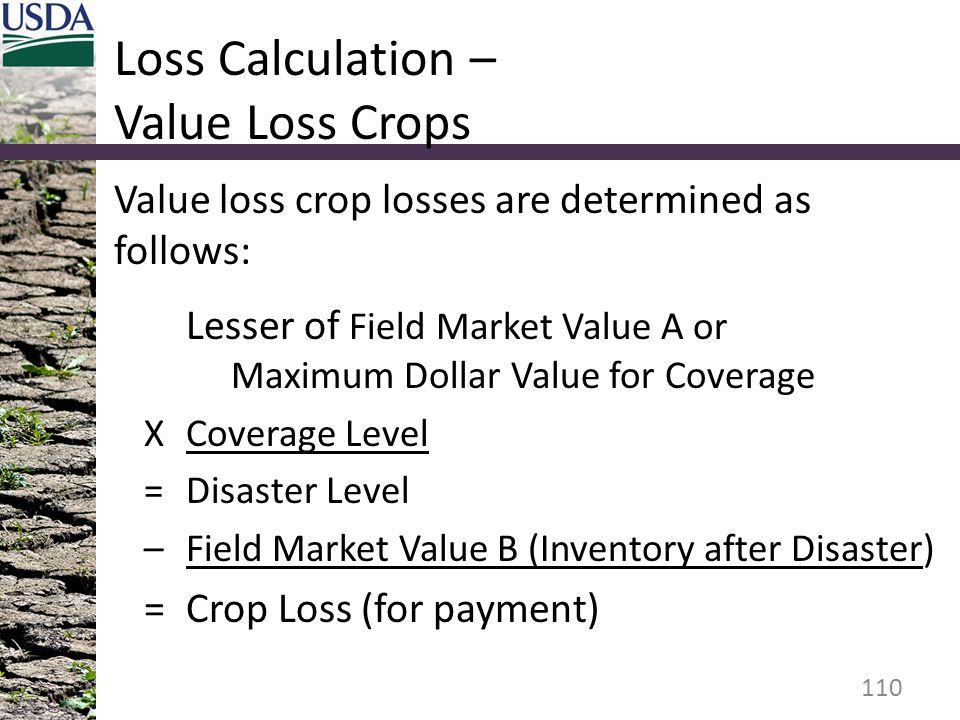Loss Calculation – Value Loss Crops Value loss crop losses are determined as follows: Lesser of Field Market Value A or Maximum Dollar Value for Coverage XCoverage Level =Disaster Level –Field Market Value B (Inventory after Disaster) =Crop Loss (for payment) 110