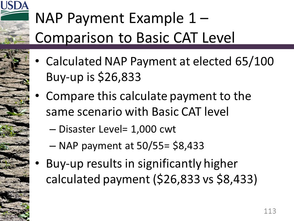 NAP Payment Example 1 – Comparison to Basic CAT Level Calculated NAP Payment at elected 65/100 Buy-up is $26,833 Compare this calculate payment to the same scenario with Basic CAT level – Disaster Level= 1,000 cwt – NAP payment at 50/55= $8,433 Buy-up results in significantly higher calculated payment ($26,833 vs $8,433) 113