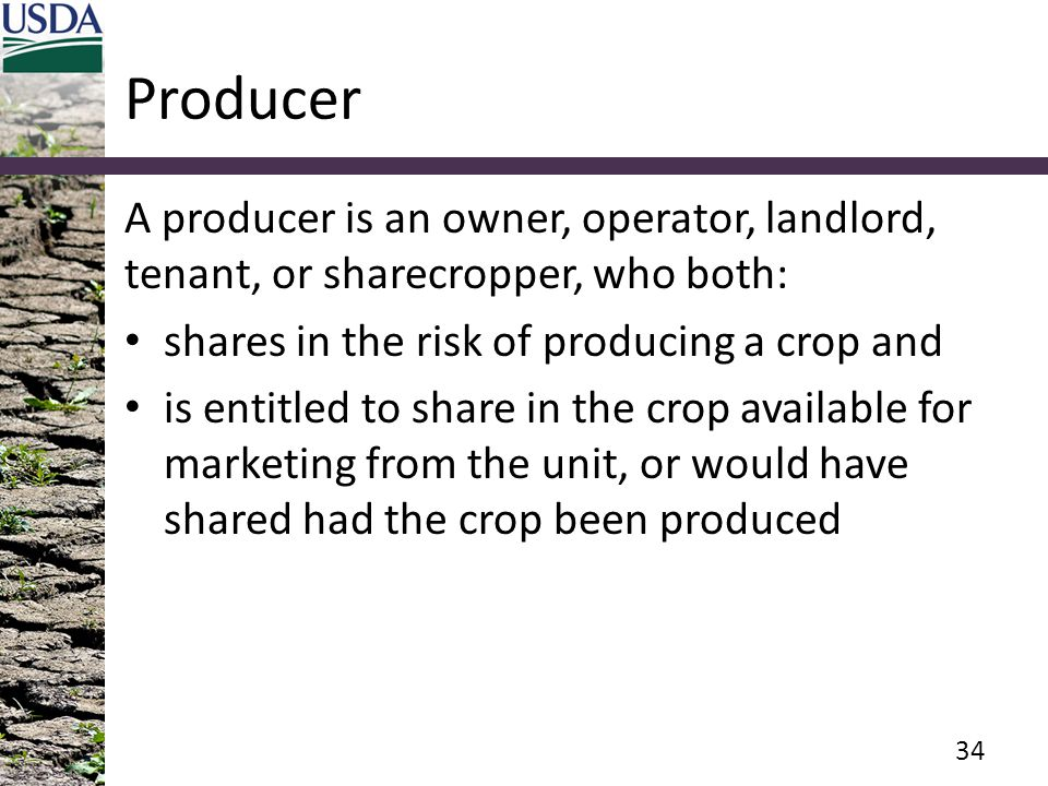 Producer A producer is an owner, operator, landlord, tenant, or sharecropper, who both: shares in the risk of producing a crop and is entitled to share in the crop available for marketing from the unit, or would have shared had the crop been produced 34