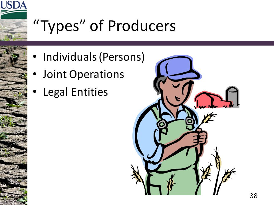 """""""Types"""" of Producers Individuals (Persons) Joint Operations Legal Entities 38"""