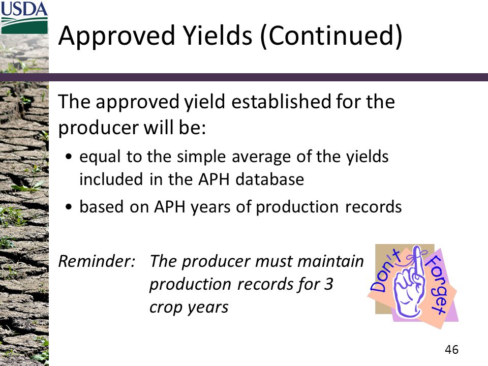 Approved Yields (Continued) The approved yield established for the producer will be: equal to the simple average of the yields included in the APH dat