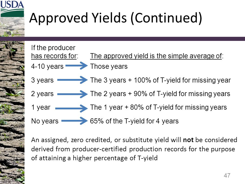If the producer has records for:The approved yield is the simple average of: 4-10 yearsThose years 3 yearsThe 3 years + 100% of T-yield for missing ye