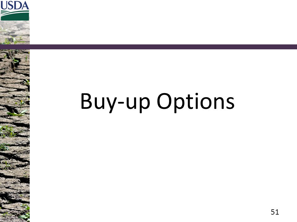 Buy-up Options 51