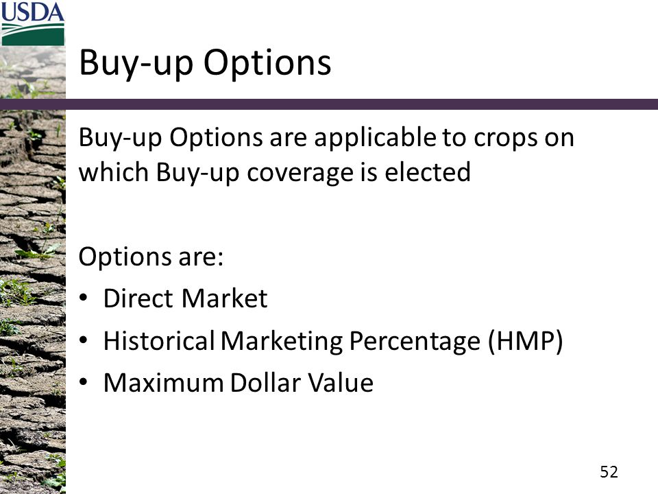 Buy-up Options Buy-up Options are applicable to crops on which Buy-up coverage is elected Options are: Direct Market Historical Marketing Percentage (HMP) Maximum Dollar Value 52