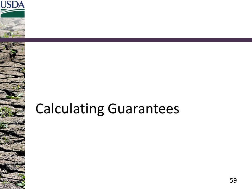 Calculating Guarantees 59