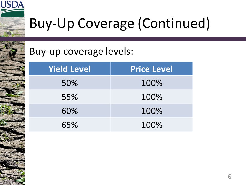 Buy-Up Coverage (Continued) Buy-up coverage levels: 6 Yield LevelPrice Level 50%100% 55%100% 60%100% 65%100%