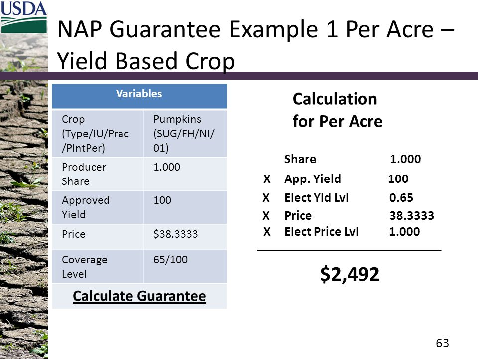 NAP Guarantee Example 1 Per Acre – Yield Based Crop Variables Crop (Type/IU/Prac /PlntPer) Pumpkins (SUG/FH/NI/ 01) Producer Share 1.000 Approved Yiel