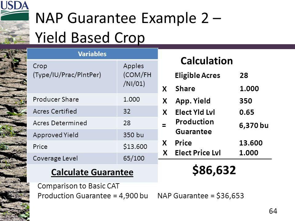 NAP Guarantee Example 2 – Yield Based Crop Variables Crop (Type/IU/Prac/PlntPer) Apples (COM/FH /NI/01) Producer Share1.000 Acres Certified32 Acres Determined28 Approved Yield350 bu Price$13.600 Coverage Level65/100 Calculate Guarantee 64 Eligible Acres28 Calculation Share1.000 X App.