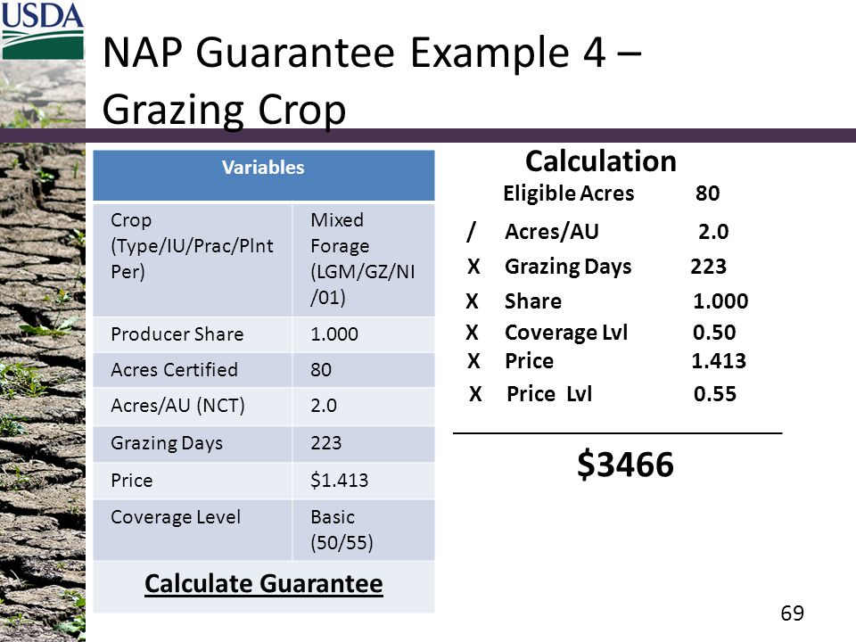 NAP Guarantee Example 4 – Grazing Crop Variables Crop (Type/IU/Prac/Plnt Per) Mixed Forage (LGM/GZ/NI /01) Producer Share1.000 Acres Certified80 Acres