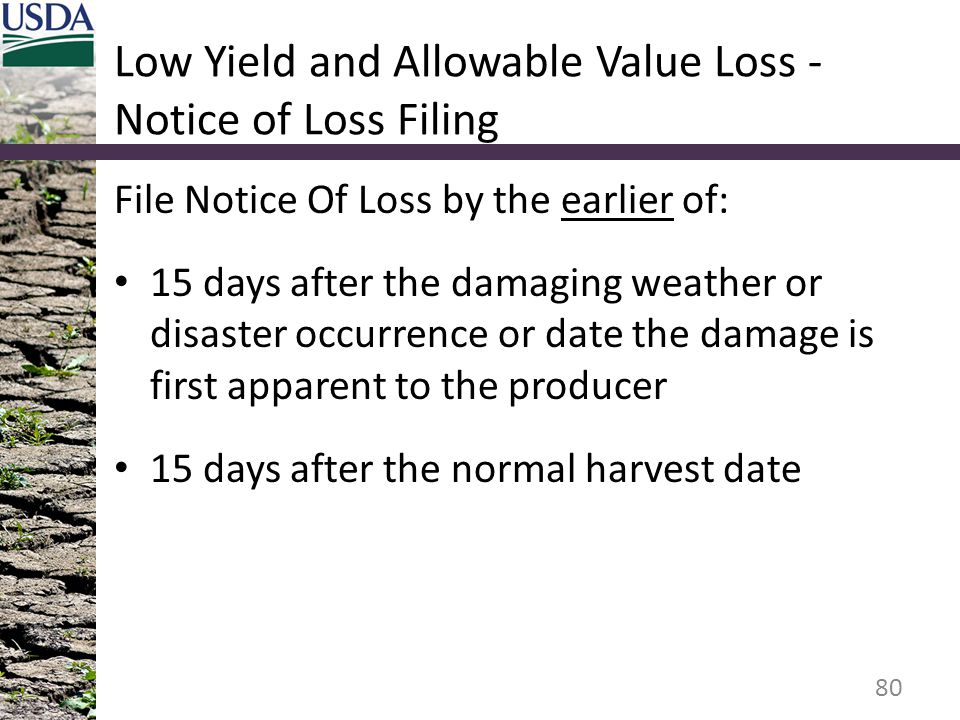 Low Yield and Allowable Value Loss - Notice of Loss Filing File Notice Of Loss by the earlier of: 15 days after the damaging weather or disaster occur