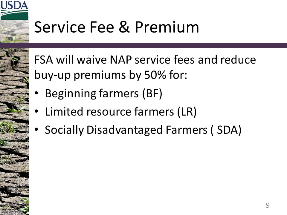 Service Fee & Premium FSA will waive NAP service fees and reduce buy-up premiums by 50% for: Beginning farmers (BF) Limited resource farmers (LR) Soci