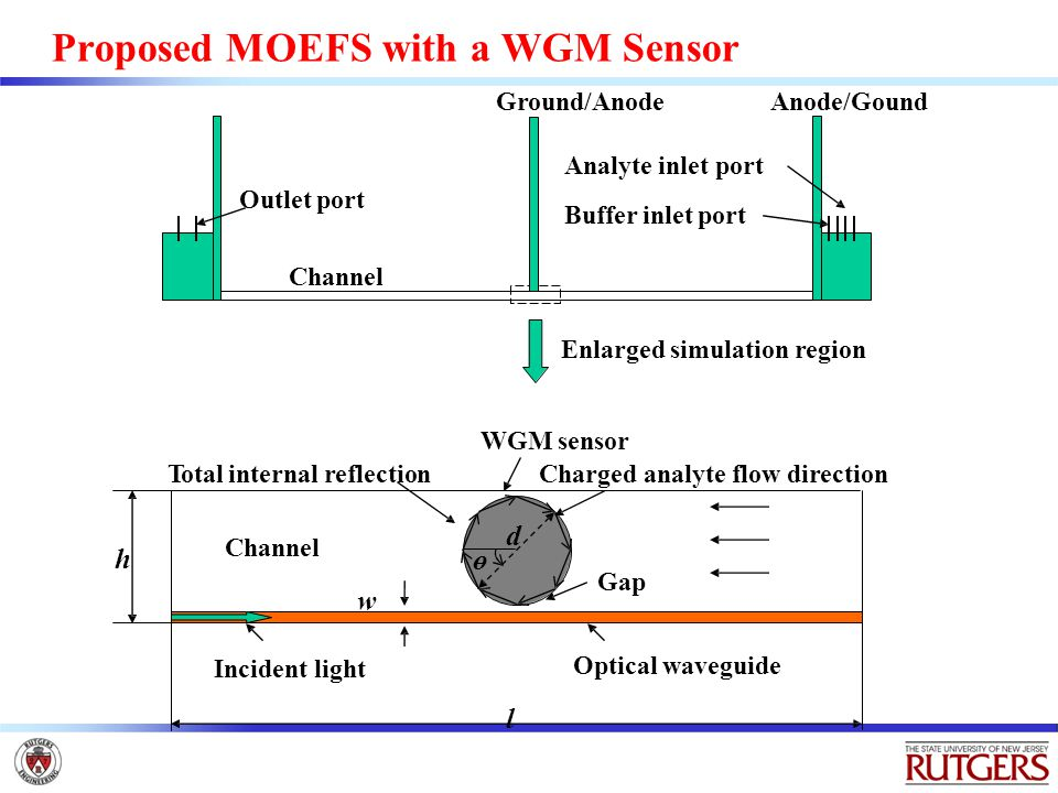 Proposed MOEFS with a WGM Sensor Anode/Gound Analyte inlet port Buffer inlet port Outlet port Channel Gap Optical waveguide Incident light Total internal reflection d ө WGM sensor Charged analyte flow direction l h w Channel Enlarged simulation region Ground/Anode