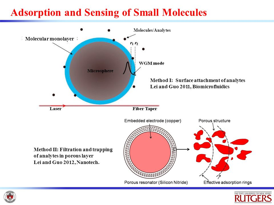Adsorption and Sensing of Small Molecules Molecules/Analytes Method II: Filtration and trapping of analytes in porous layer Lei and Guo 2012, Nanotech