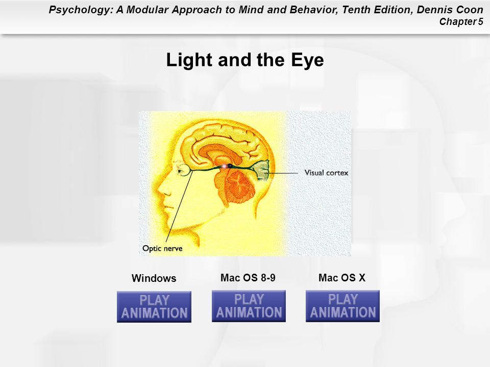 Psychology: A Modular Approach to Mind and Behavior, Tenth Edition, Dennis Coon Chapter 5 Windows Mac OS 8-9Mac OS X Light and the Eye