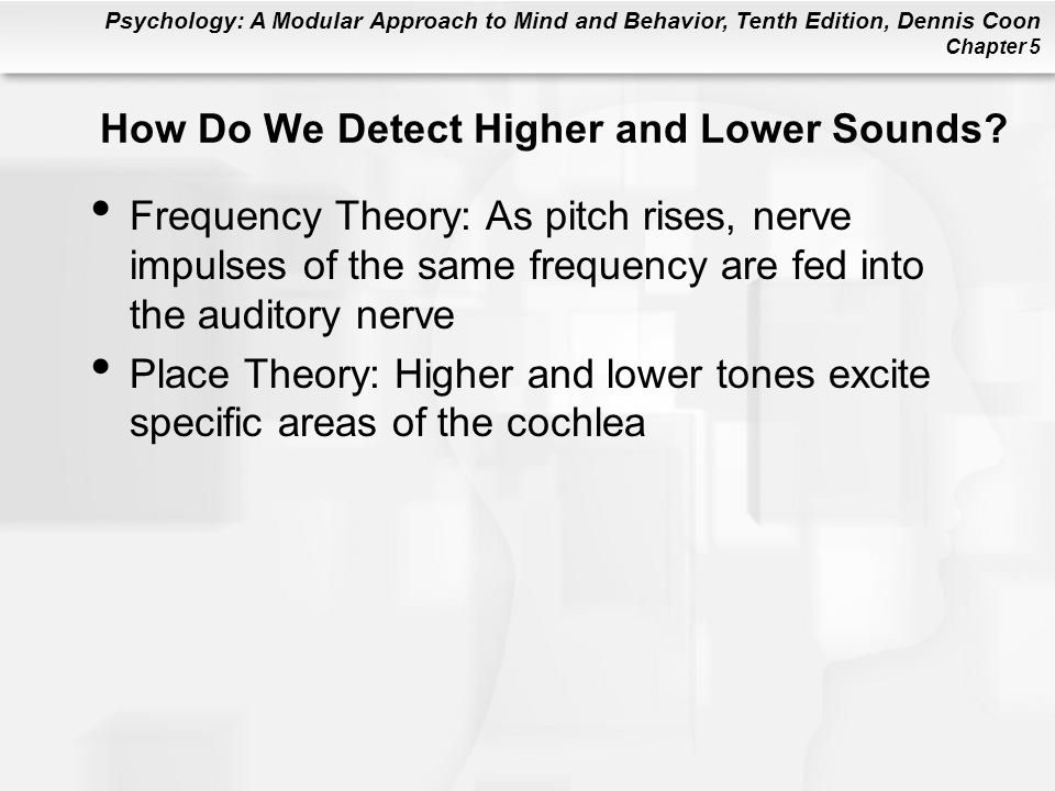 Psychology: A Modular Approach to Mind and Behavior, Tenth Edition, Dennis Coon Chapter 5 How Do We Detect Higher and Lower Sounds.