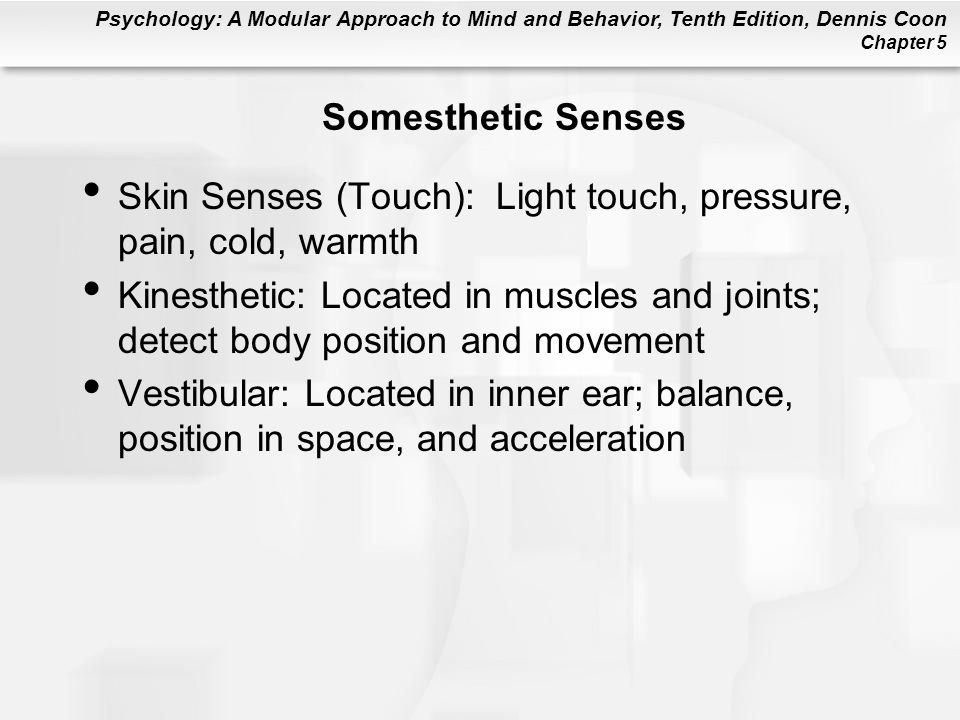 Psychology: A Modular Approach to Mind and Behavior, Tenth Edition, Dennis Coon Chapter 5 Somesthetic Senses Skin Senses (Touch): Light touch, pressure, pain, cold, warmth Kinesthetic: Located in muscles and joints; detect body position and movement Vestibular: Located in inner ear; balance, position in space, and acceleration