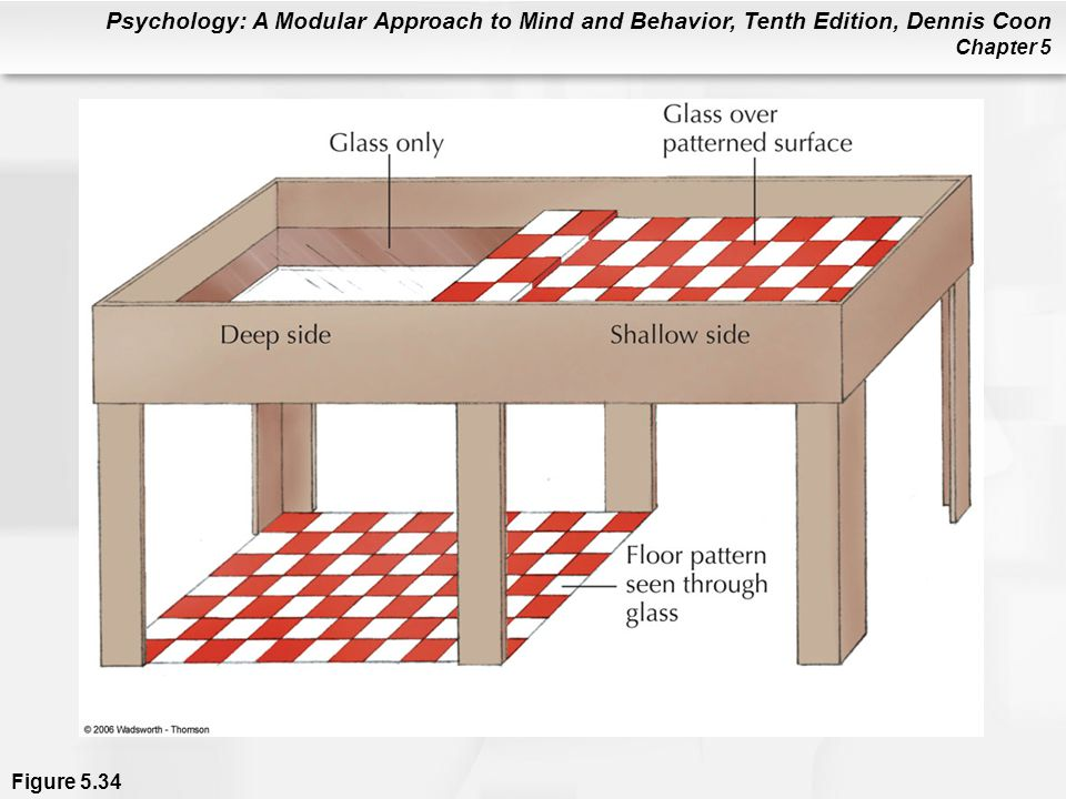 Psychology: A Modular Approach to Mind and Behavior, Tenth Edition, Dennis Coon Chapter 5 Figure 5.34