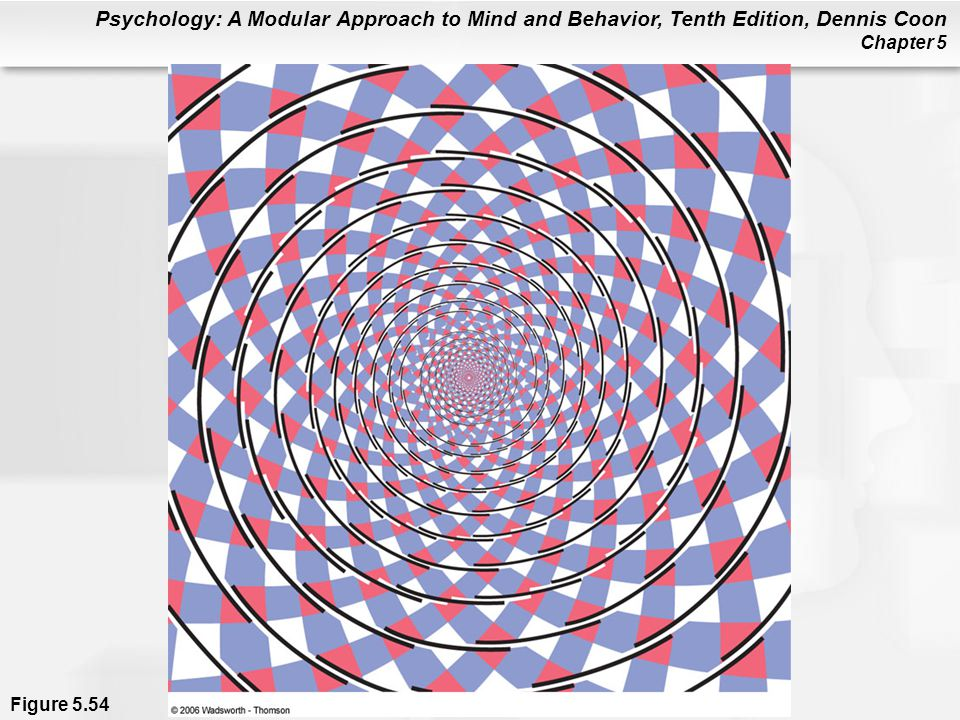 Psychology: A Modular Approach to Mind and Behavior, Tenth Edition, Dennis Coon Chapter 5 Figure 5.54
