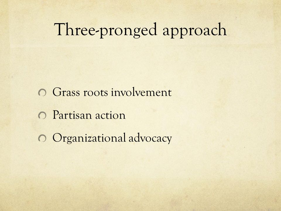 Three-pronged approach Grass roots involvement Partisan action Organizational advocacy