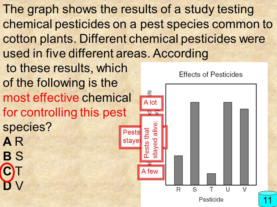 The graph shows the results of a study testing chemical pesticides on a pest species common to cotton plants. Different chemical pesticides were used