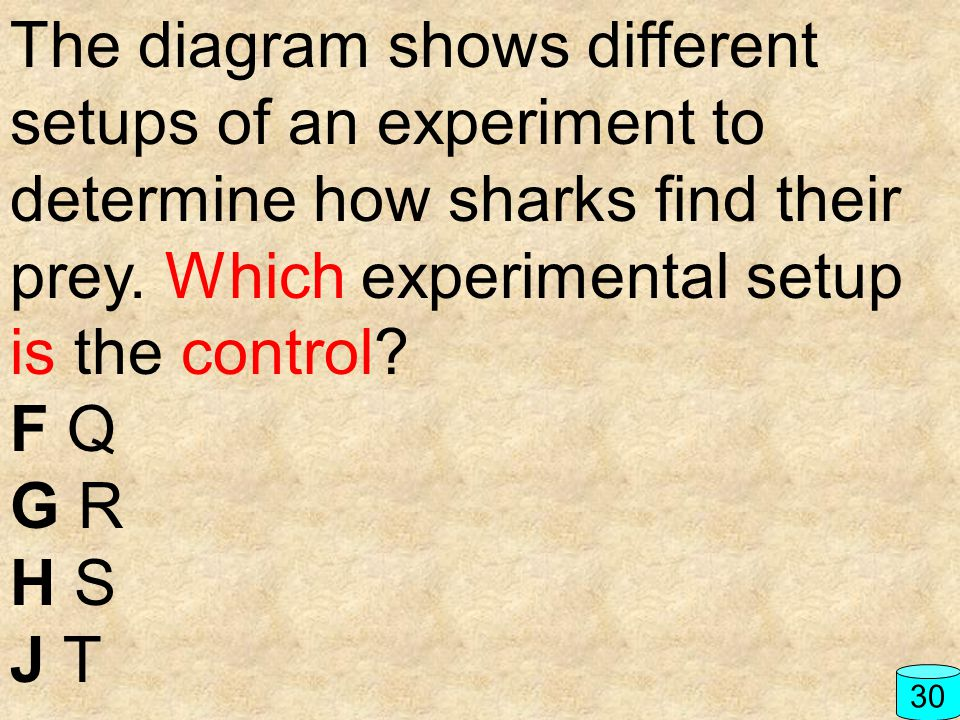The diagram shows different setups of an experiment to determine how sharks find their prey. Which experimental setup is the control? F Q G R H S J T