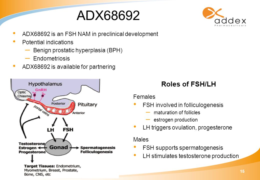 15 ADX68692 ADX68692 is an FSH NAM in preclinical development Potential indications – Benign prostatic hyperplasia (BPH) – Endometriosis ADX68692 is available for partnering Roles of FSH/LH Females FSH involved in folliculogenesis – maturation of follicles – estrogen production LH triggers ovulation, progesterone Males FSH supports spermatogenesis LH stimulates testosterone production