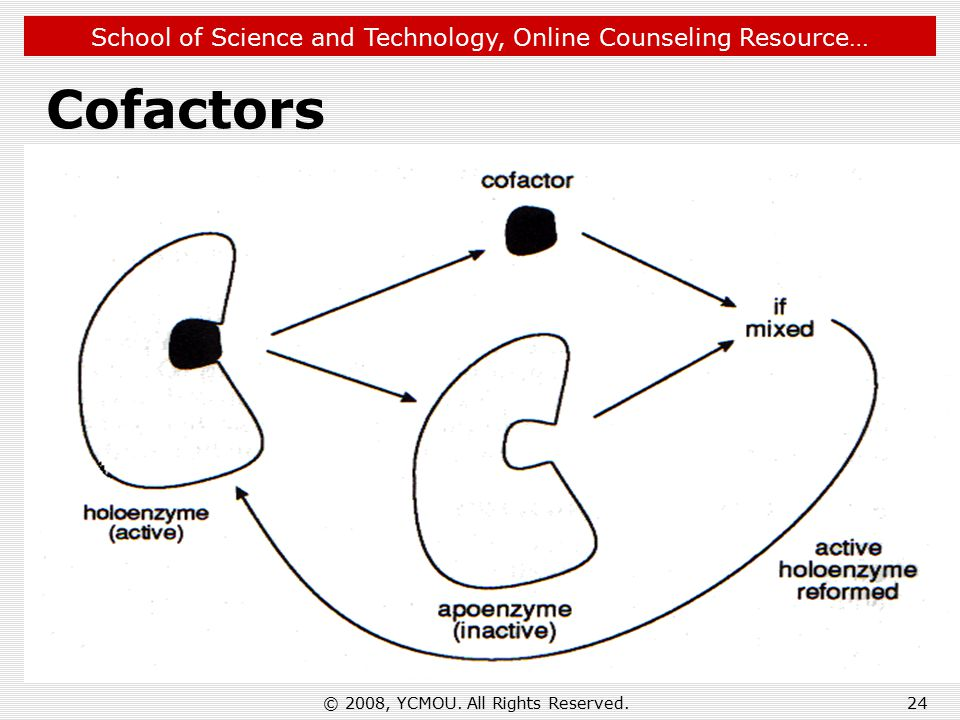 School of Science and Technology, Online Counseling Resource… 24 Cofactors © 2008, YCMOU.