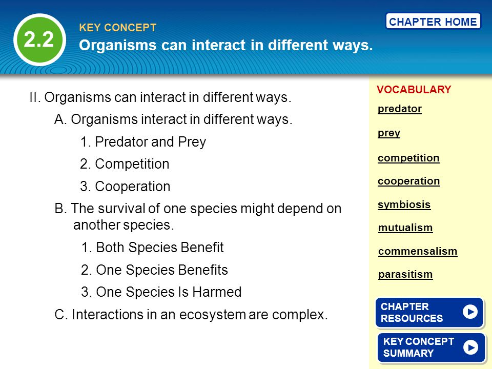 VOCABULARY KEY CONCEPT CHAPTER HOME II. Organisms can interact in different ways. A. Organisms interact in different ways. B. The survival of one spec
