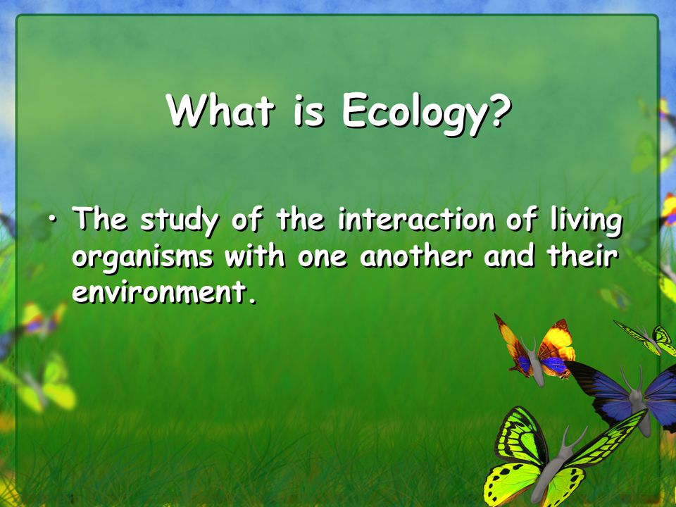 Terms: ____________________________: The population size that an environment (ecosystem) can sustain ____________________________: Any factor limiting the survival and productivity of organisms, for example, the lack of water could limit grass in a grassland biome.