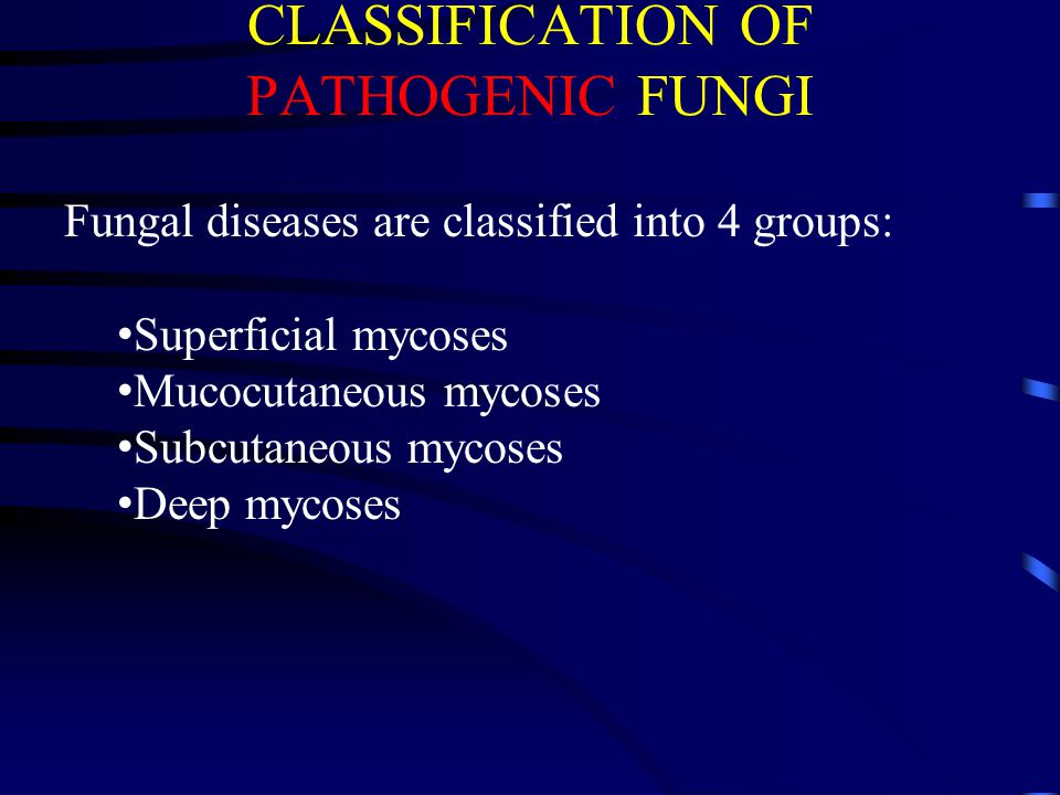 CLASSIFICATION OF PATHOGENIC FUNGI Fungal diseases are classified into 4 groups: Superficial mycoses Mucocutaneous mycoses Subcutaneous mycoses Deep m