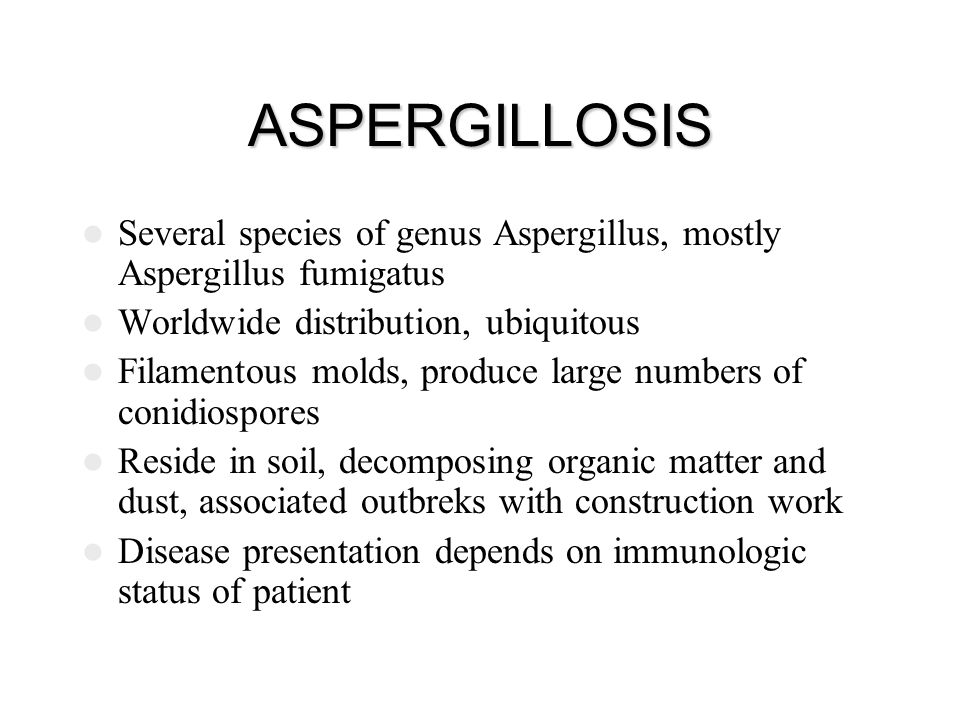 ASPERGILLOSIS Several species of genus Aspergillus, mostly Aspergillus fumigatus Worldwide distribution, ubiquitous Filamentous molds, produce large n