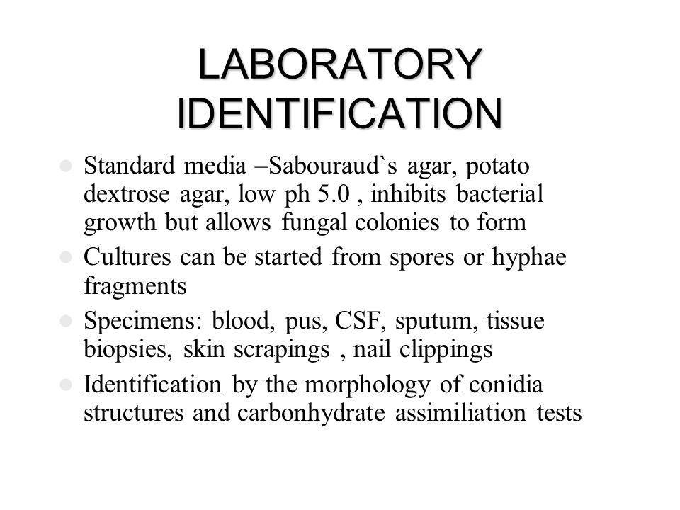LABORATORY IDENTIFICATION Standard media –Sabouraud`s agar, potato dextrose agar, low ph 5.0, inhibits bacterial growth but allows fungal colonies to