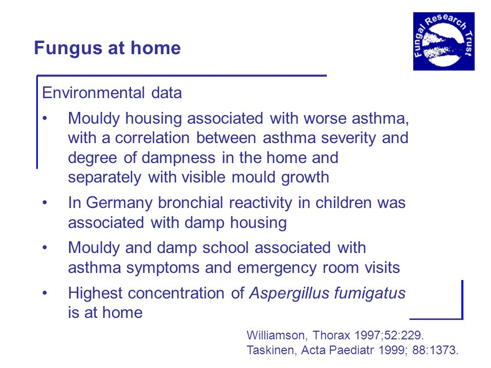 Fungus at home Environmental data Mouldy housing associated with worse asthma, with a correlation between asthma severity and degree of dampness in the home and separately with visible mould growth In Germany bronchial reactivity in children was associated with damp housing Mouldy and damp school associated with asthma symptoms and emergency room visits Highest concentration of Aspergillus fumigatus is at home Williamson, Thorax 1997;52:229.