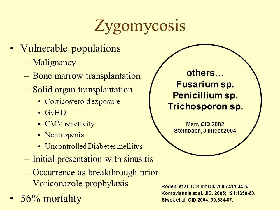 Zygomycosis Vulnerable populations –Malignancy –Bone marrow transplantation –Solid organ transplantation Corticosteroid exposure GvHD CMV reactivity N