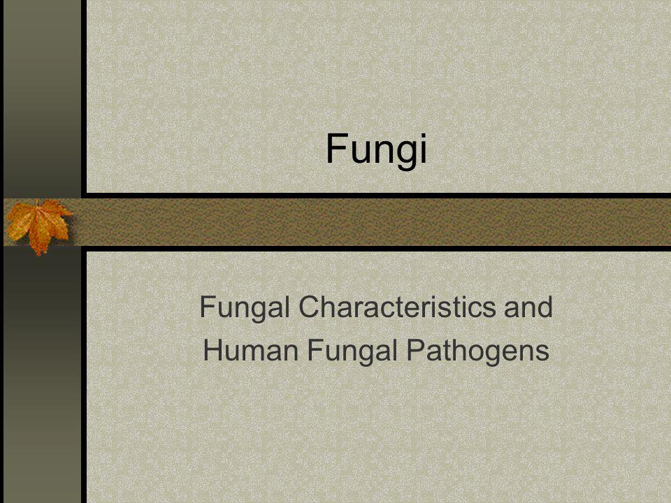 Fungi Fungal Characteristics and Human Fungal Pathogens