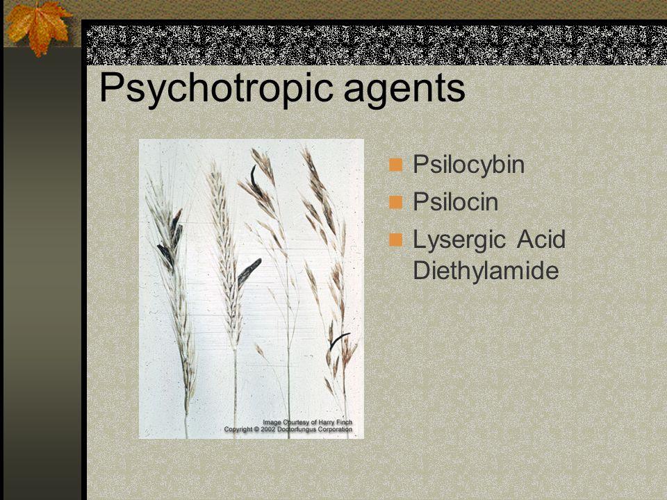 Psychotropic agents Psilocybin Psilocin Lysergic Acid Diethylamide