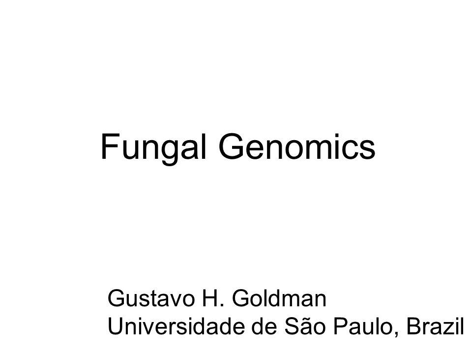 Fungal Genomics Gustavo H. Goldman Universidade de São Paulo, Brazil
