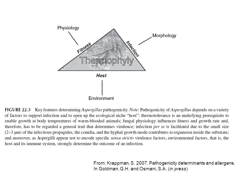 From: Krappman, S. 2007. Pathogenicity determinants and allergens.
