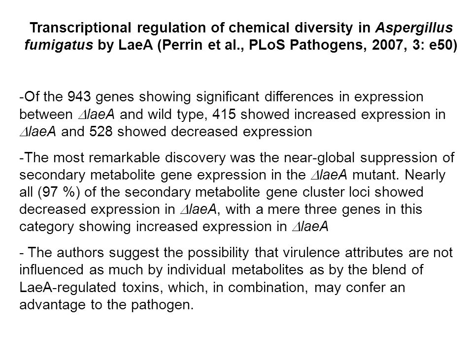Transcriptional regulation of chemical diversity in Aspergillus fumigatus by LaeA (Perrin et al., PLoS Pathogens, 2007, 3: e50) -Of the 943 genes showing significant differences in expression between  laeA and wild type, 415 showed increased expression in  laeA and 528 showed decreased expression -The most remarkable discovery was the near-global suppression of secondary metabolite gene expression in the  laeA mutant.