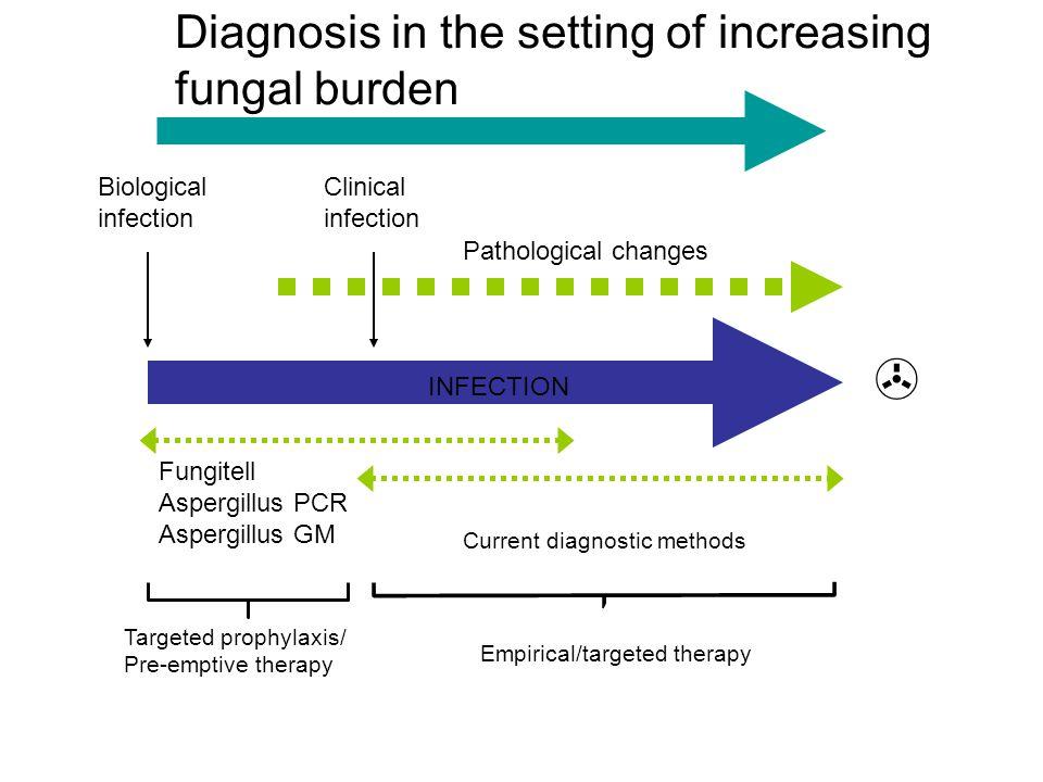 Biological infection Pathological changes Empirical/targeted therapy Fungitell Aspergillus PCR Aspergillus GM Current diagnostic methods INFECTION  C