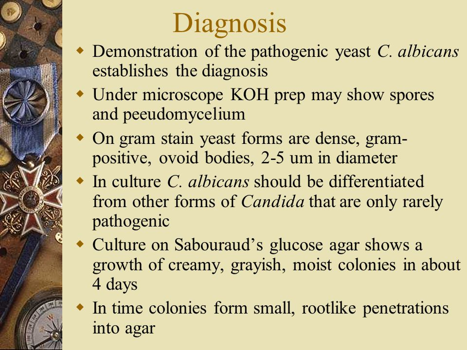 Diagnosis  Demonstration of the pathogenic yeast C. albicans establishes the diagnosis  Under microscope KOH prep may show spores and peeudomycelium