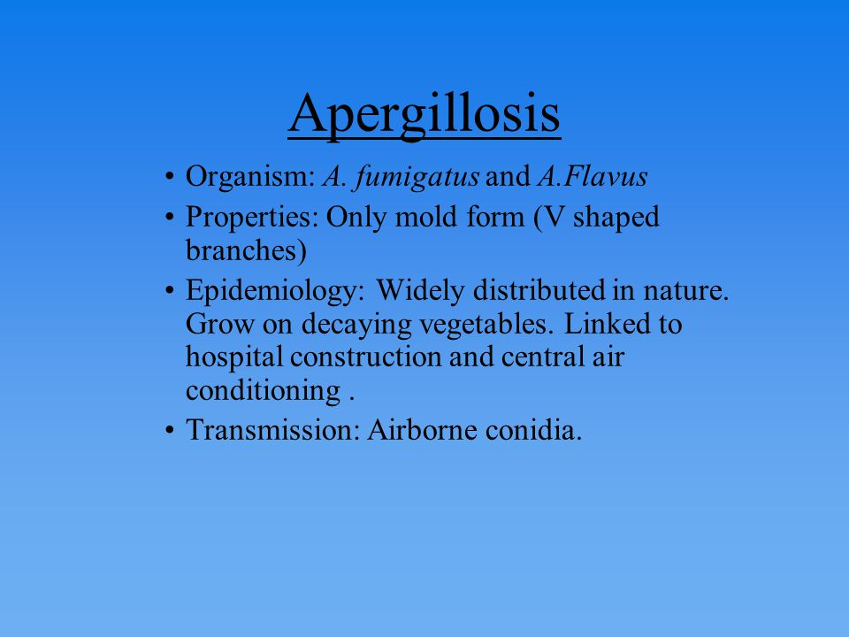 Apergillosis Organism: A. fumigatus and A.Flavus Properties: Only mold form (V shaped branches) Epidemiology: Widely distributed in nature. Grow on de