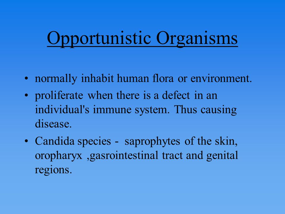 Summary: – The number of urinary tract infections caused by fungi is increasing.