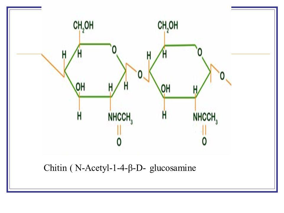 Chitin ( N-Acetyl-1-4-β-D- glucosamine