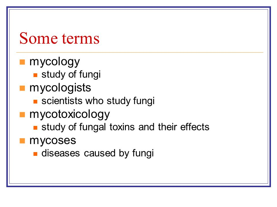 Some terms mycology study of fungi mycologists scientists who study fungi mycotoxicology study of fungal toxins and their effects mycoses diseases caused by fungi