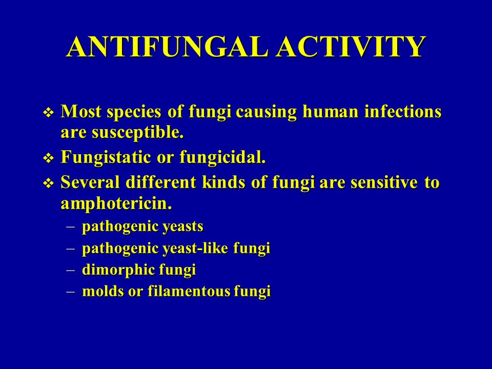 ANTIFUNGAL ACTIVITY  Most species of fungi causing human infections are susceptible.