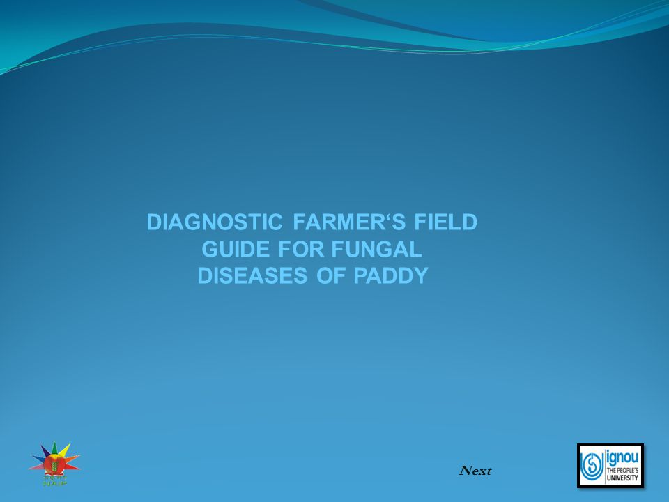 DIAGNOSTIC FARMER'S FIELD GUIDE FOR FUNGAL DISEASES OF PADDY Next